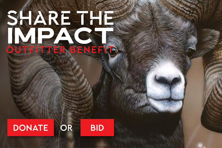 SCI Kicks Off 'Share the Impact' Outfitter Benefit Auction