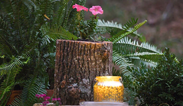 Learn how to easily convert wood logs into beautiful and natural planters for your patio.