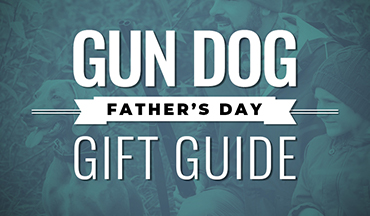 Celebrate dad by gearing him - and his bird dog - up for the fall.