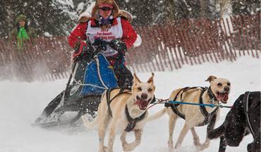 A World Champion sled-dog racer and veterinarian discusses how vital, and fun, conditioning is for your bird dog.