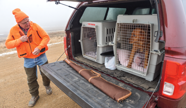 Bird hunting road trip? Considerations for your gun dog before hitting the highway.