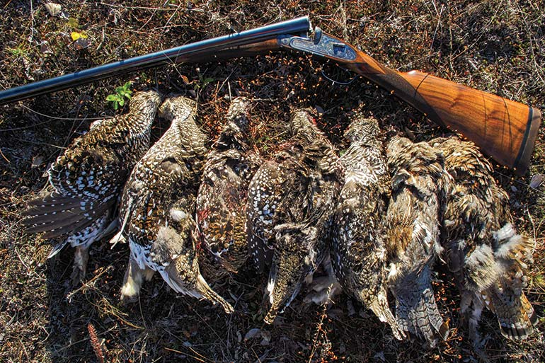 Hunting Sharp-Tailed Grouse in Alaska