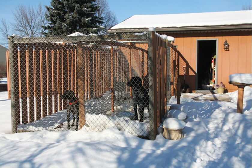 How To Build The Perfect Dog Kennel, Dog Kennel Attached To Garage