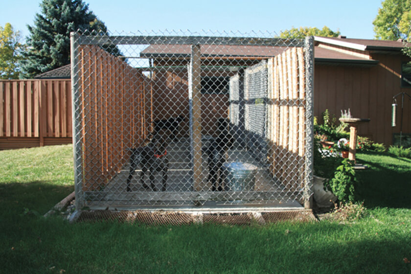 <p>Whether you're building or buying a new dog kennel, following these simple guidelines will ensure a safe and comfy home for your favorite hunting buddy.</p>