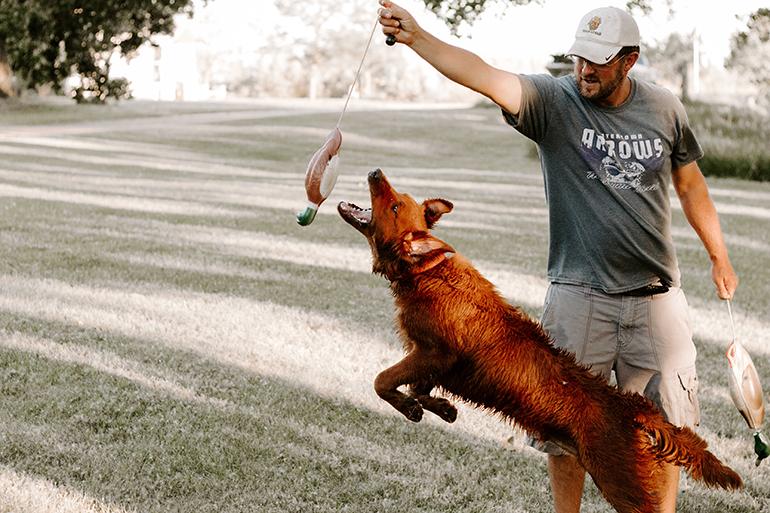 Casey training new gun dog