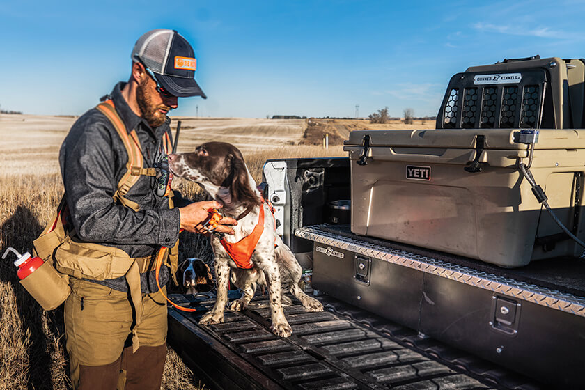 DIY Truck Bed Storage for Upland Hunters