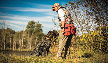 To create a truly well-rounded, versatile hunting dog, you must adhere to four basic principles.