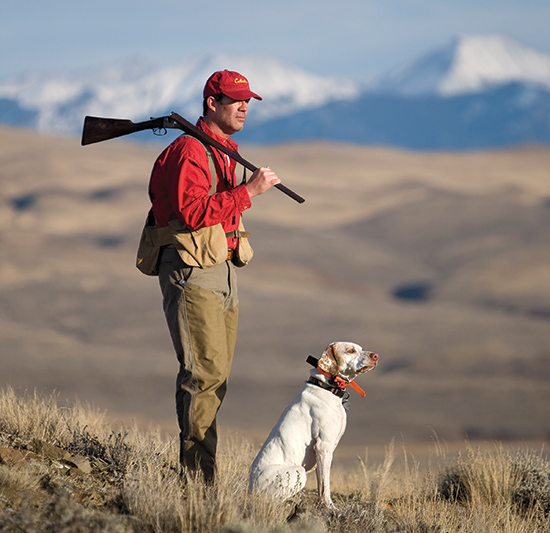 hunter in field next to sitting English pointer