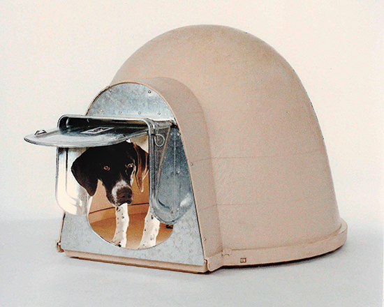 K9 Kondo Chew-Proof Igloo Dog Door for Dogloo XT Doghouse