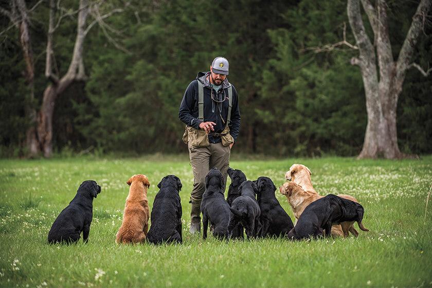 Trainer with black lab puppy