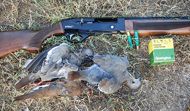 This .410 semi-auto packs a punch on upland game.