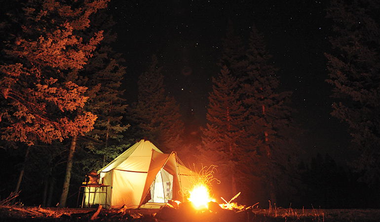 upland basecamp in the woods at night with fire