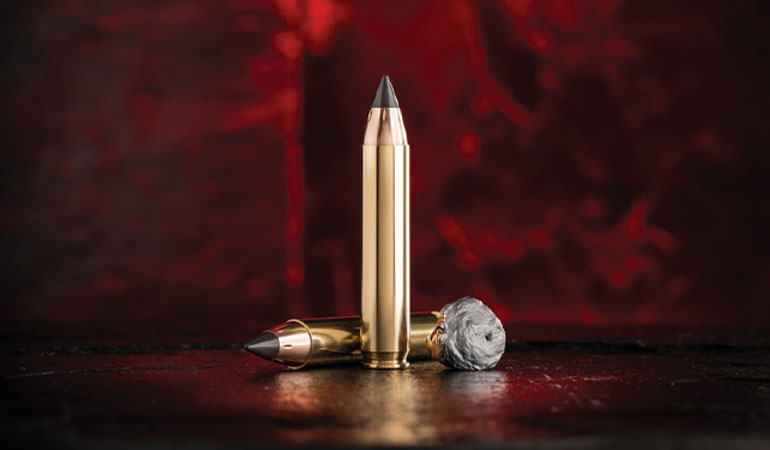 New Ammo Offerings for 2019
