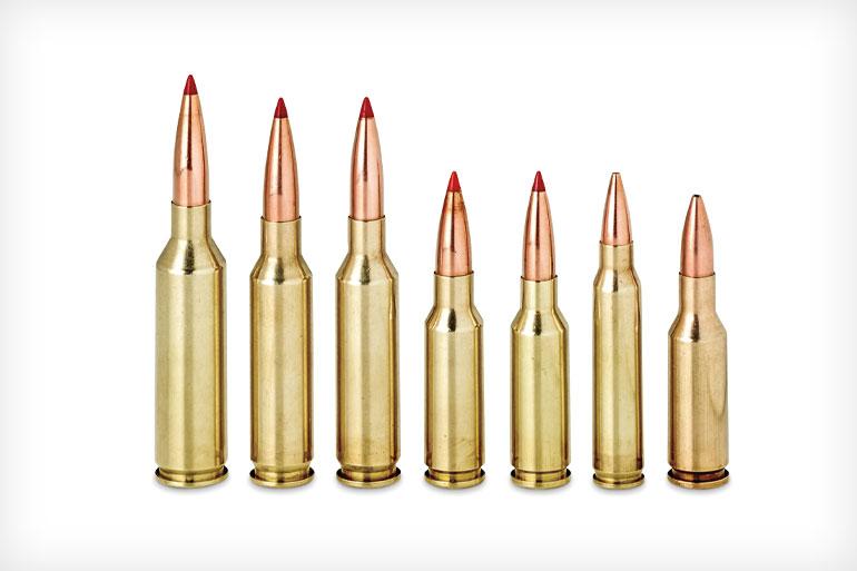 Hornady-6mm-ARC-Review