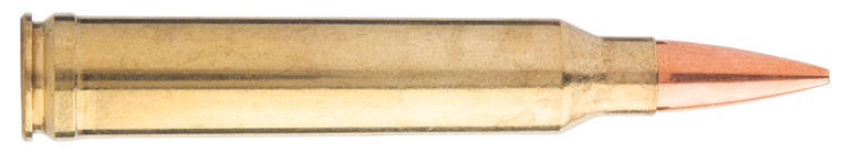 Top-6-Long-Range-Competition-Cartridges-300-Win-Mag