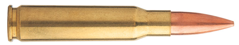 Top-6-Long-Range-Competition-Cartridges-308-Win