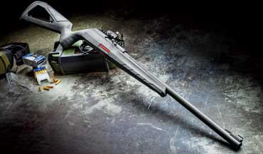The new Winchester Wildcat .22LR semiauto rifle may be this year's best rifle.