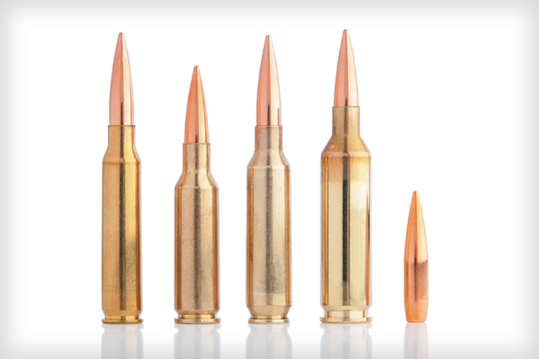 Varmint & Predator Ammunition