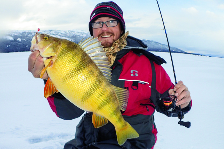 These fisheries are your best bet for a chance at a whopper-size perch.
