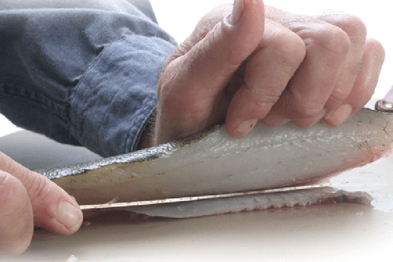 Check out this filleting trick!