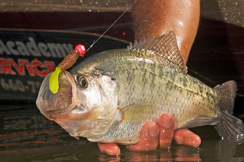 <p>Less action is more when stubborn crappies refuse to eat.</p>