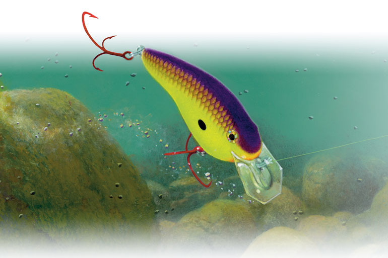 Crankbaits excel for covering water, bumping cover, and daring spring bass to bite.