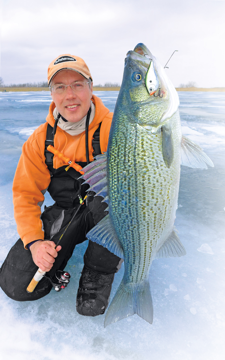 //content.osgnetworks.tv/infisherman/content/photos/Top-Ice-Predators-Striped-Bass.jpg