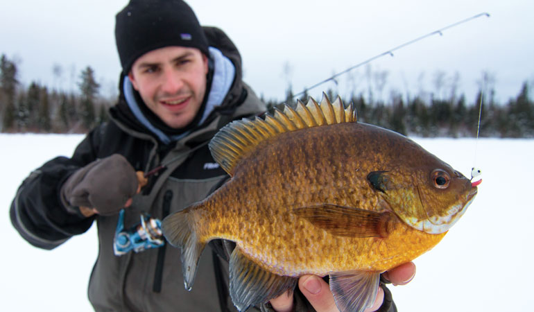 //content.osgnetworks.tv/infisherman/content/photos/Tungsten-and-Lead-Jigs-for-Panfish.jpg