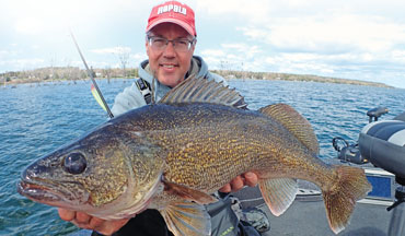 The range of walleye hardbaits encompasses multiple categories and a dizzying number of lures.