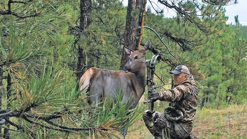 //content.osgnetworks.tv/northamericanelk/content/photos/11-Bowhunter-Items-1.jpg