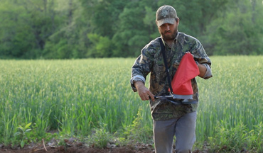 By the time summer rolls around, many favorable plants to whitetails become less palatable.
