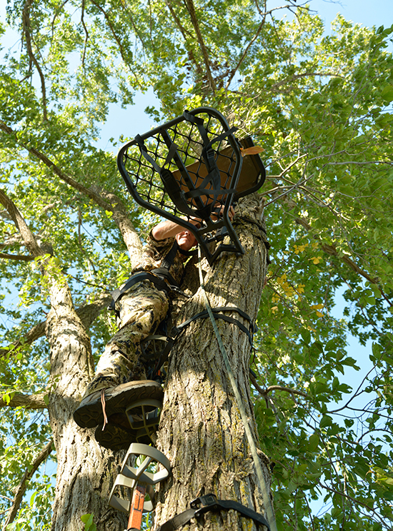 bowhunter hanging treestand