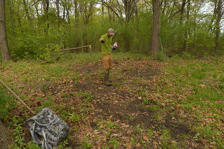 5 Food Plot Realities for Deer Hunters