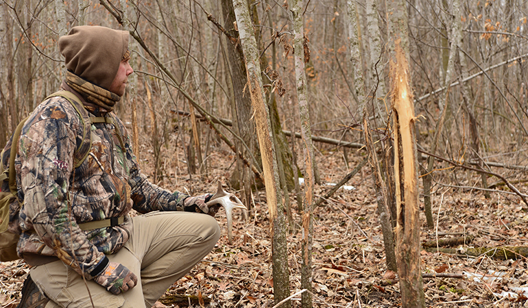 What Sheds Can Tell You About a Buck's Habits