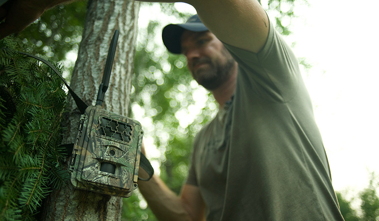 Will Wireless Trail Cameras Make You a Better Hunter?