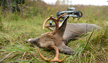 If you want to travel in search of whitetail adventure, start researching options now.