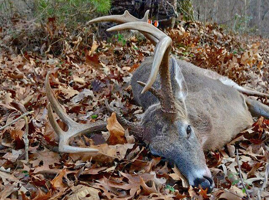 12 Deadly Hunting Tips and Tactics to Score a Monster Buck