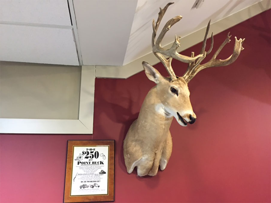 The $250-Per-Point Buck