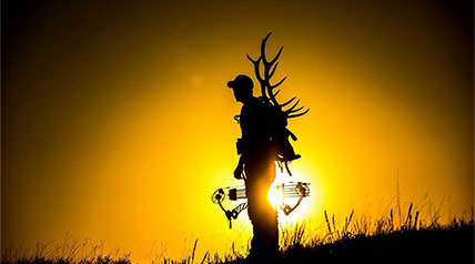 Maybe you're like me. When it comes to the ongoing dream of bowhunting elk, that is. As in an elk bowhunt is just not in the cards this year, a dream that isn't going to happen in 2015.