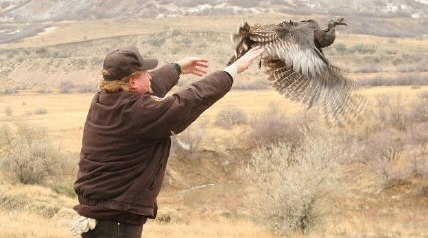 Ever had an encounter with an anti-hunter? Been on the defensive a time or two? There are ways to act at such moments.