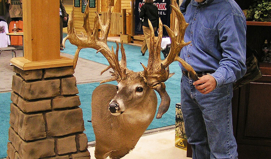 Science of Whitetail Antlers: Big Questions Answered