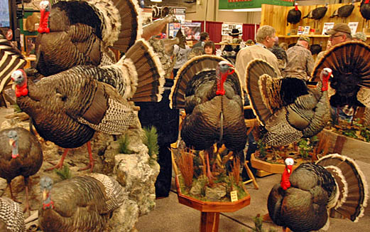 Turkey Calls, Conservation, Camaraderie