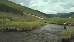 Undercut Banks, A Prime Location For Trout - Fly Fishing Tip (Video)