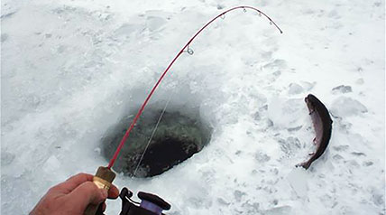 Certain ice-fishing species favor specific habitats and conditions. Knowing where they'll be helps you catch fish more effectively. Park your ATV or SxS along the shoreline and look here...