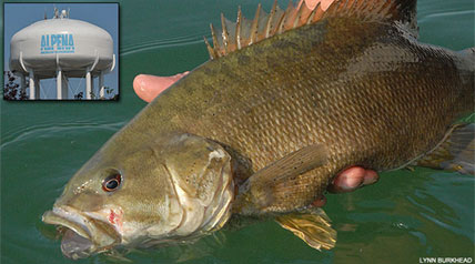 When anglers - and certainly the 24 pros with Jack Link's Major League Fishing - think of wetting a line somewhere in the state of Michigan, smallmouth bass are the fish that first come to mind.