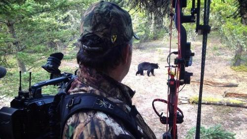 Bears were plentiful but getting a good shot wasn't easy for Bowman. (Nicole Reeve photo)