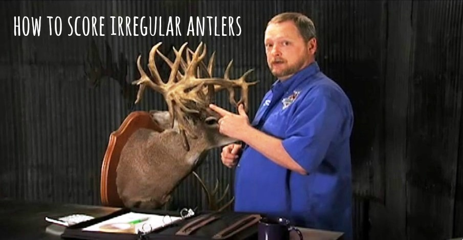 Scoring Irregular Deer (Video)