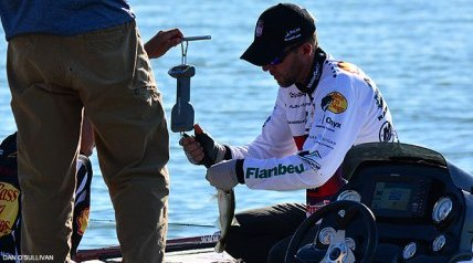 Each round of any Jack Link's Major League Fishing event can be about survival. What we've seen thus far in the 2014 Shell Rotella Challenge Cup in Denton, Texas, is that excelling was about the big bite, and surviving has been a nail biter.
