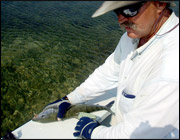 Against Odds, Tags Help Anglers Recapture Bonefish