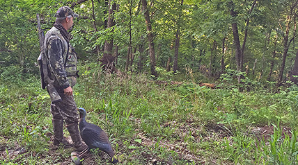 Textbook calling isn't enough to lower the hammer on sensitive, call-shy tom turkeys; you have to change up your hen-talk and setup strategies to harvest educated longbeards.